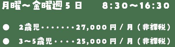 月曜〜金曜週5日8:30〜16:302歳児27,000円/月(非課税)3〜5歳児25,000円/月(非課税)